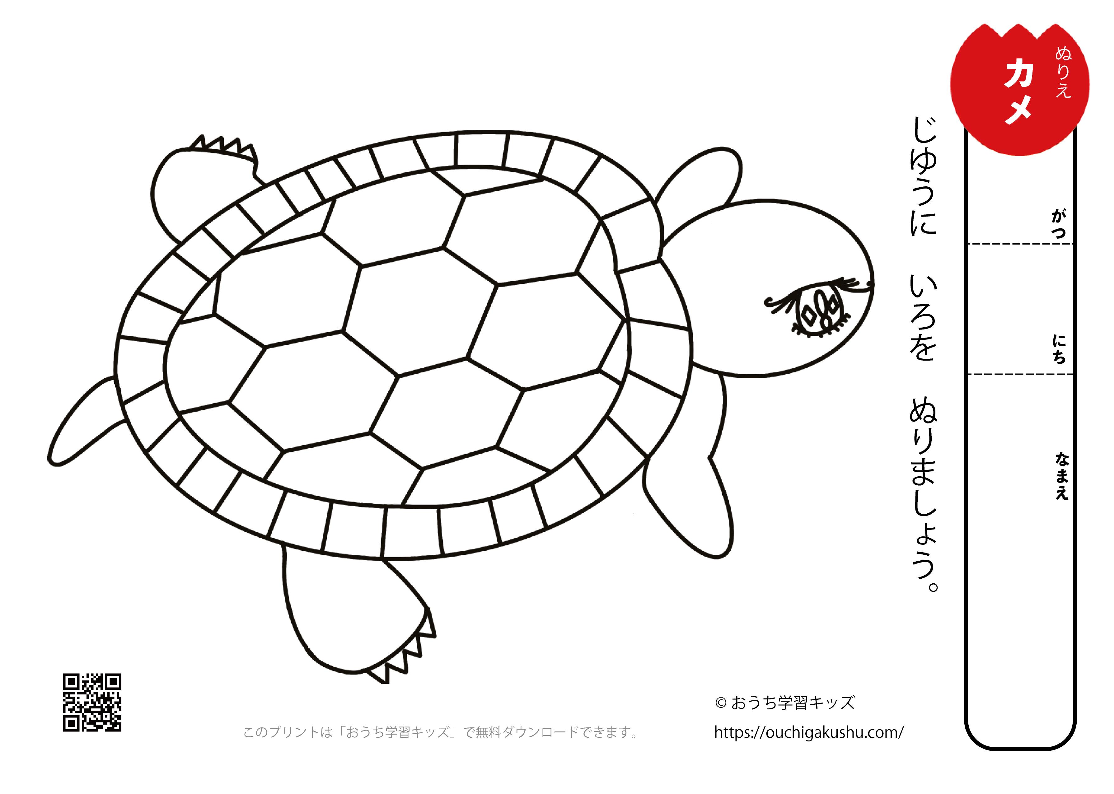 無料ぬりえプリント「カメ(亀)」